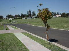 Property in Withcott - From $185,000 COMING SOON