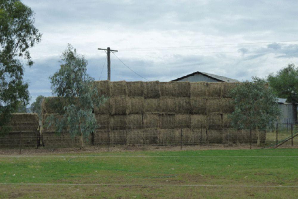Real Estate in Winton