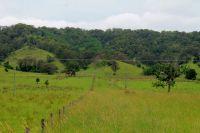 Property in Kyogle - $220,000