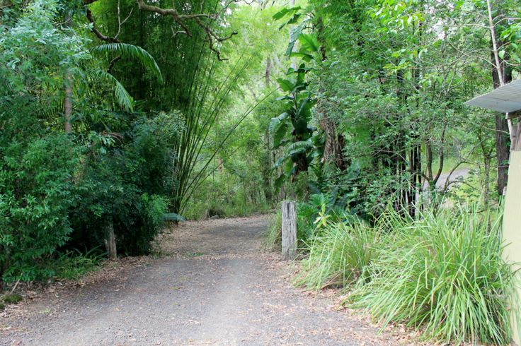 Kyogle Properties For Sale