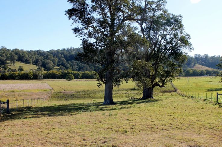 Property in Kyogle - $165,000