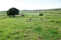 Property in Kyogle - $185,000