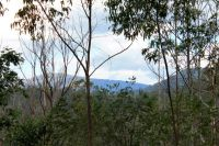 Property in Kyogle - $245,000
