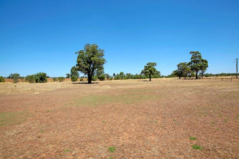 Junee real estate Leased
