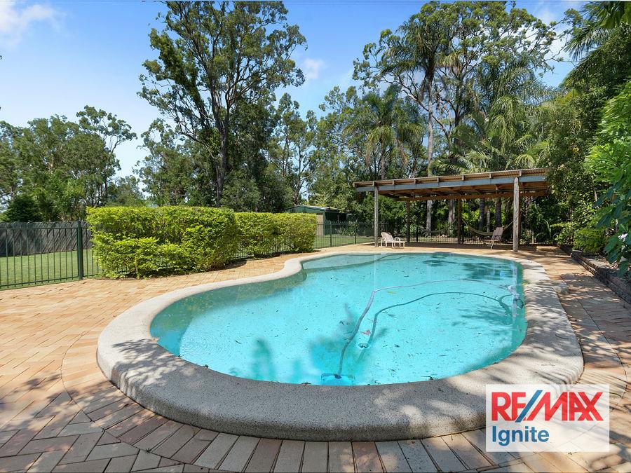Karalee real estate For Rent