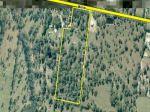 Property in Park Ridge - Asking $3m