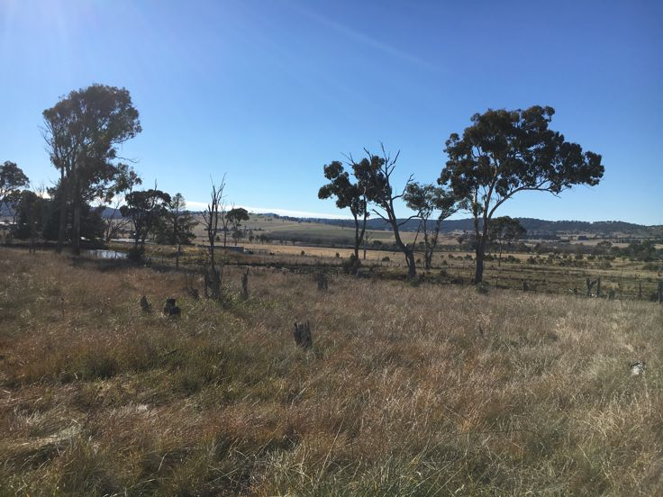 Property in Armidale - $125,000