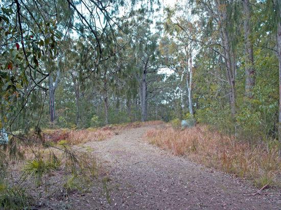 Real Estate in Cedar Brush Creek