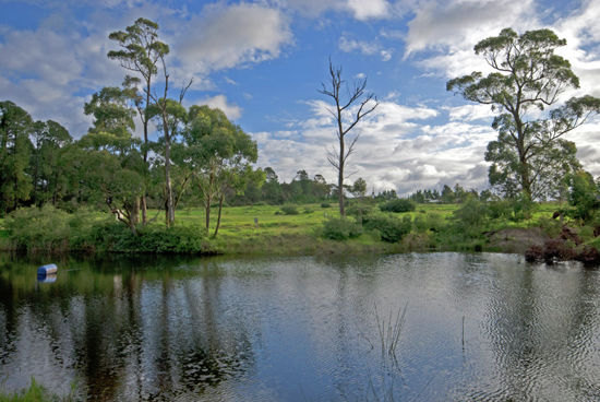 Selling your property in Peats Ridge