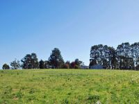 Property in Peats Ridge - Sold for $975,000