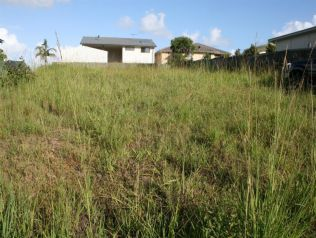 Property in Corindi Beach - Sold for $165,000