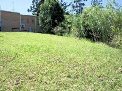 Property in Woolgoolga - Sold for $229,500