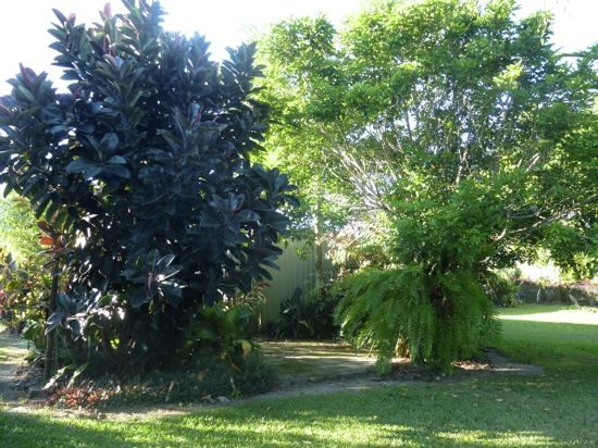 Real Estate in Babinda