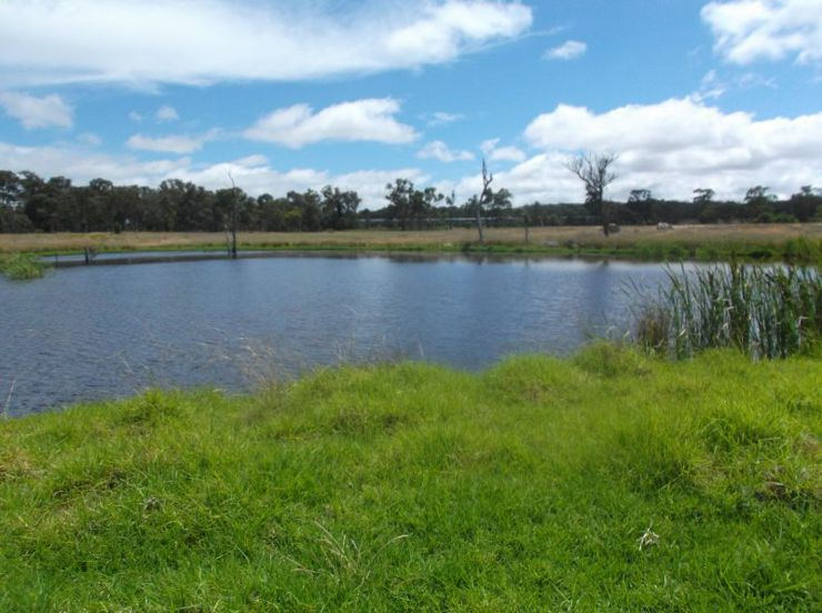 Property in Stanthorpe - $340,000