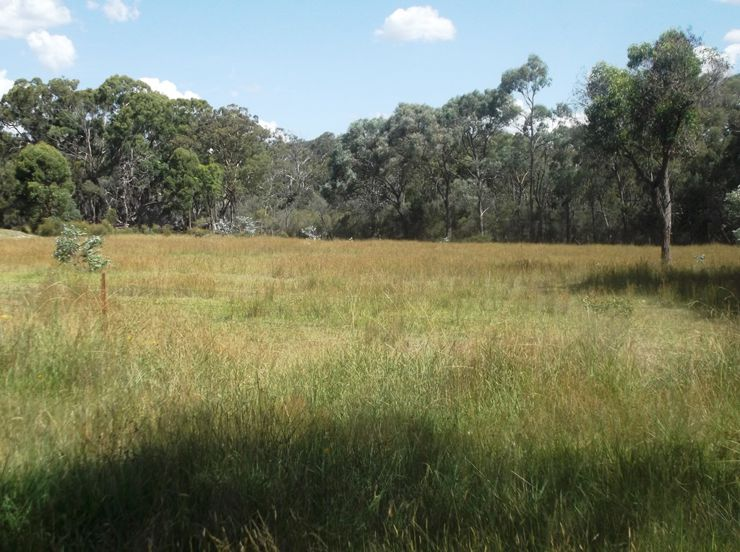 Stanthorpe Properties For Sale