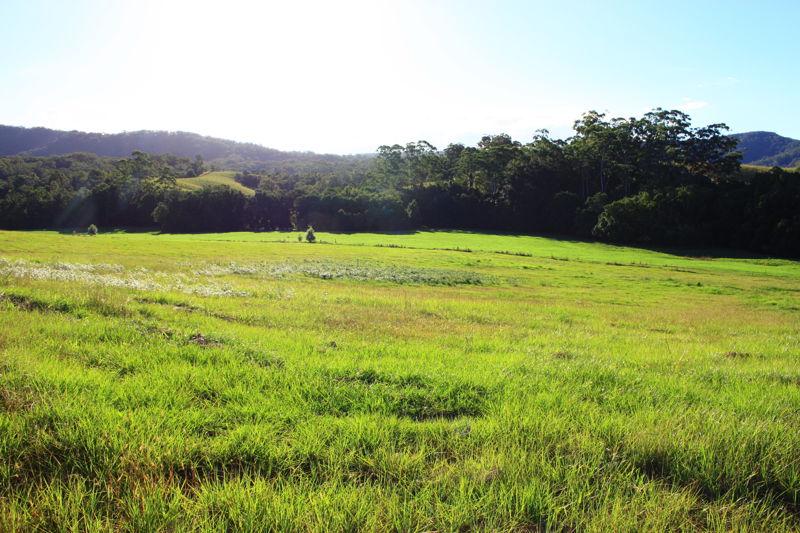Real Estate in Valla