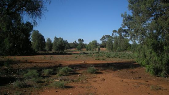Property Sold in Nyngan