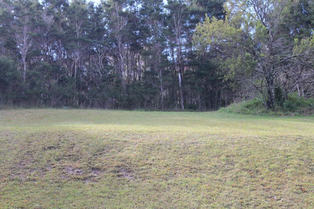 1 Weaver Crescent, Watanobbi, NSW 2259