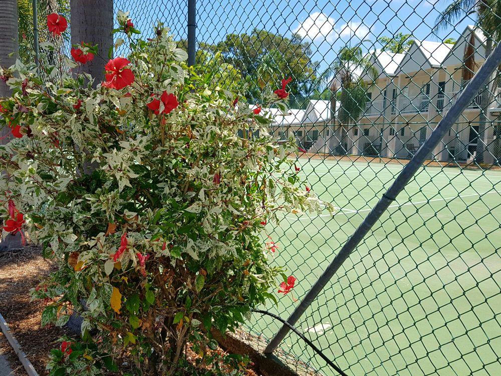 Tropical gardens and a fullsize tennis court