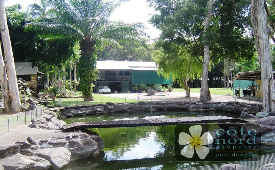 Pond, house