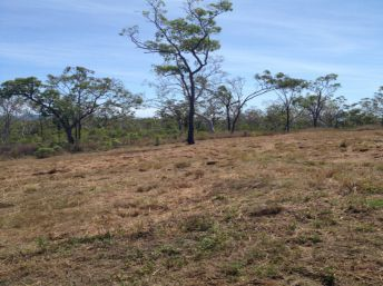 Property in Midge Point - $130,000 NEG
