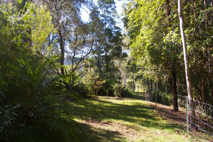 Real Estate in Conondale