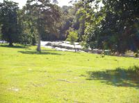 Property in Maleny - Sold for $970,000