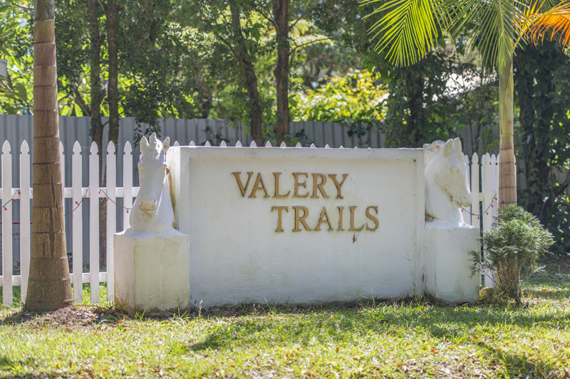 Real Estate in Valery