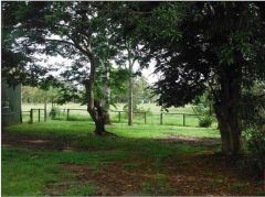 Property in Bellmere - $260,000